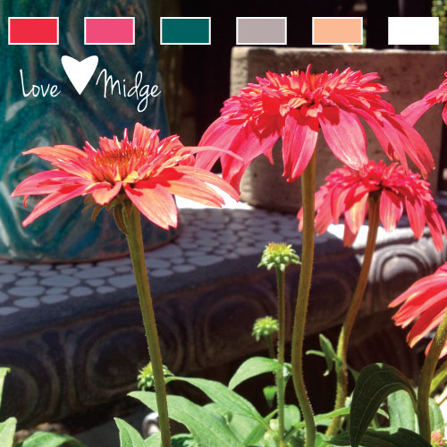 Red Color Palette Love Midge