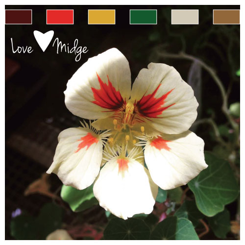 Red Green Color Palette Love Midge