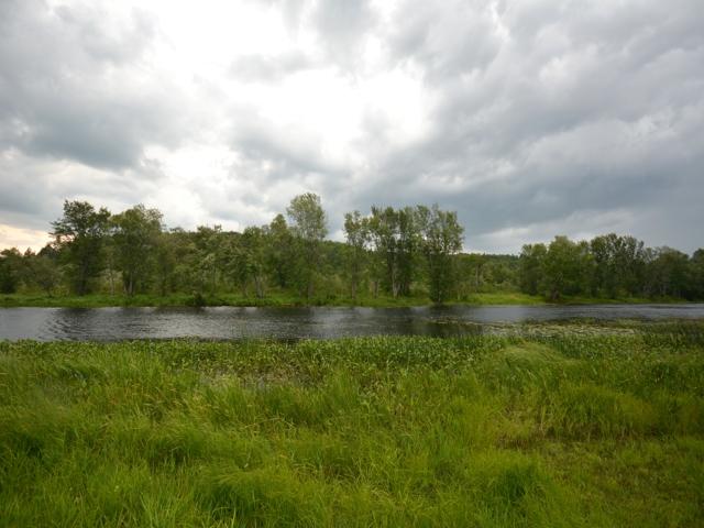River_1.jpg