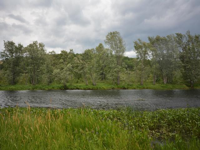 River_5.jpg