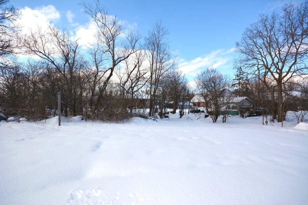 36-Back Yard.jpg
