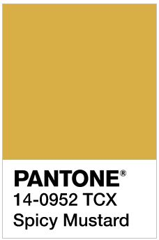 pantone spicy mustard jewelry