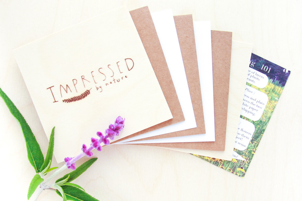 diy flower pressing kit - IMPRESSED by nature