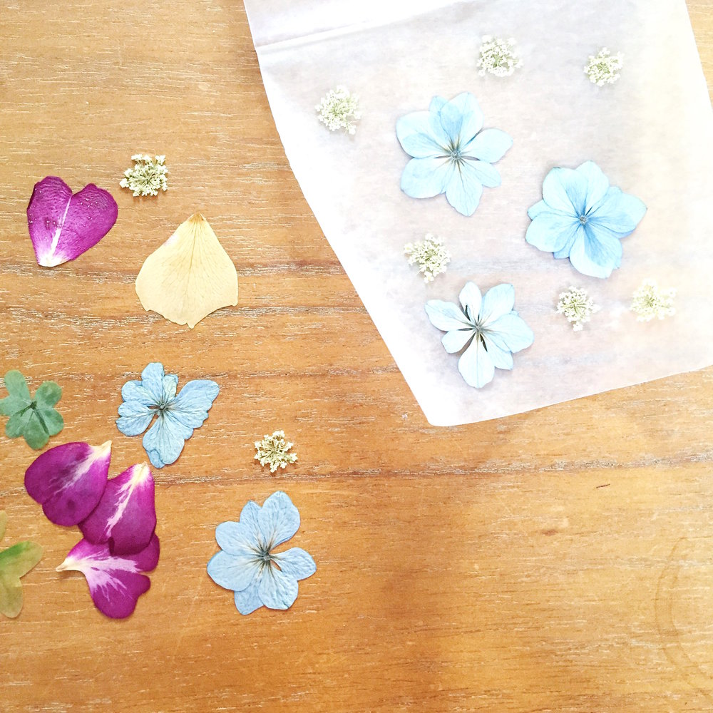 pressed flowers DIY project - click through to make this project!