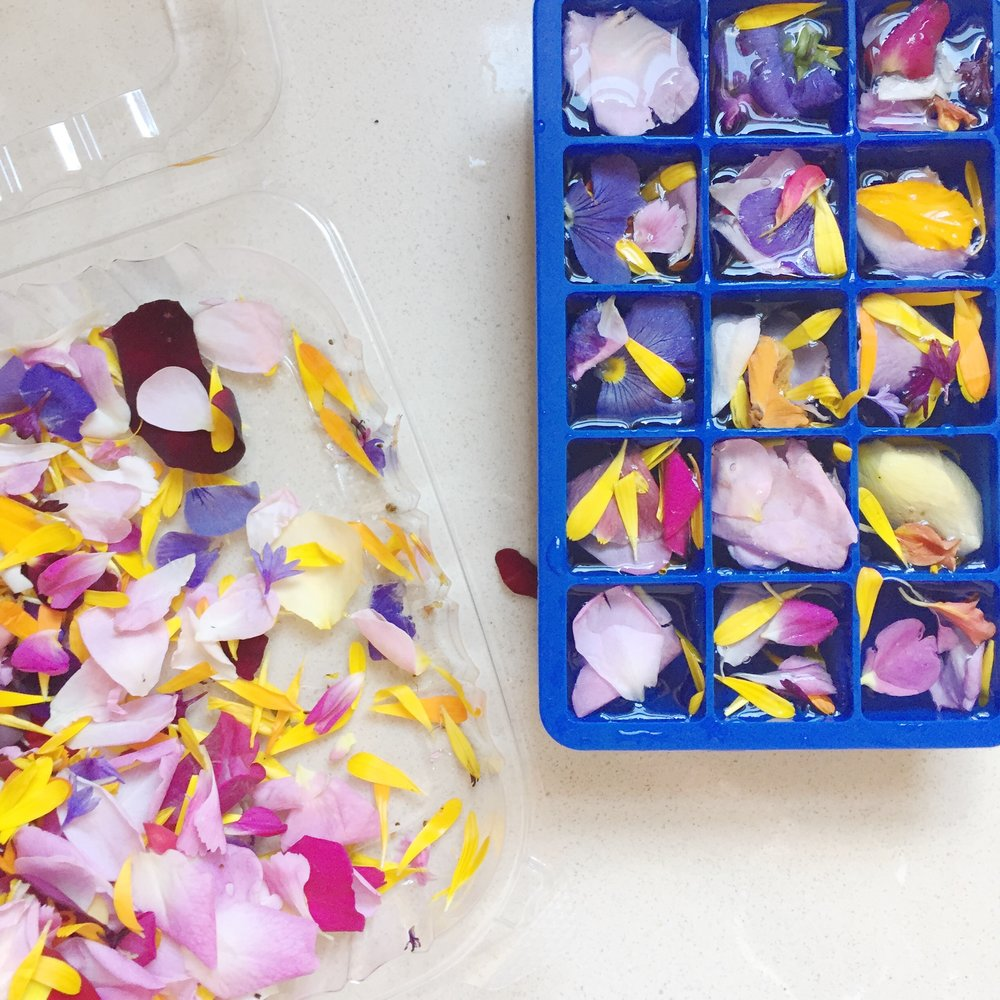 IMPRESSED by nature Blog - edible flower ice cubes spring party