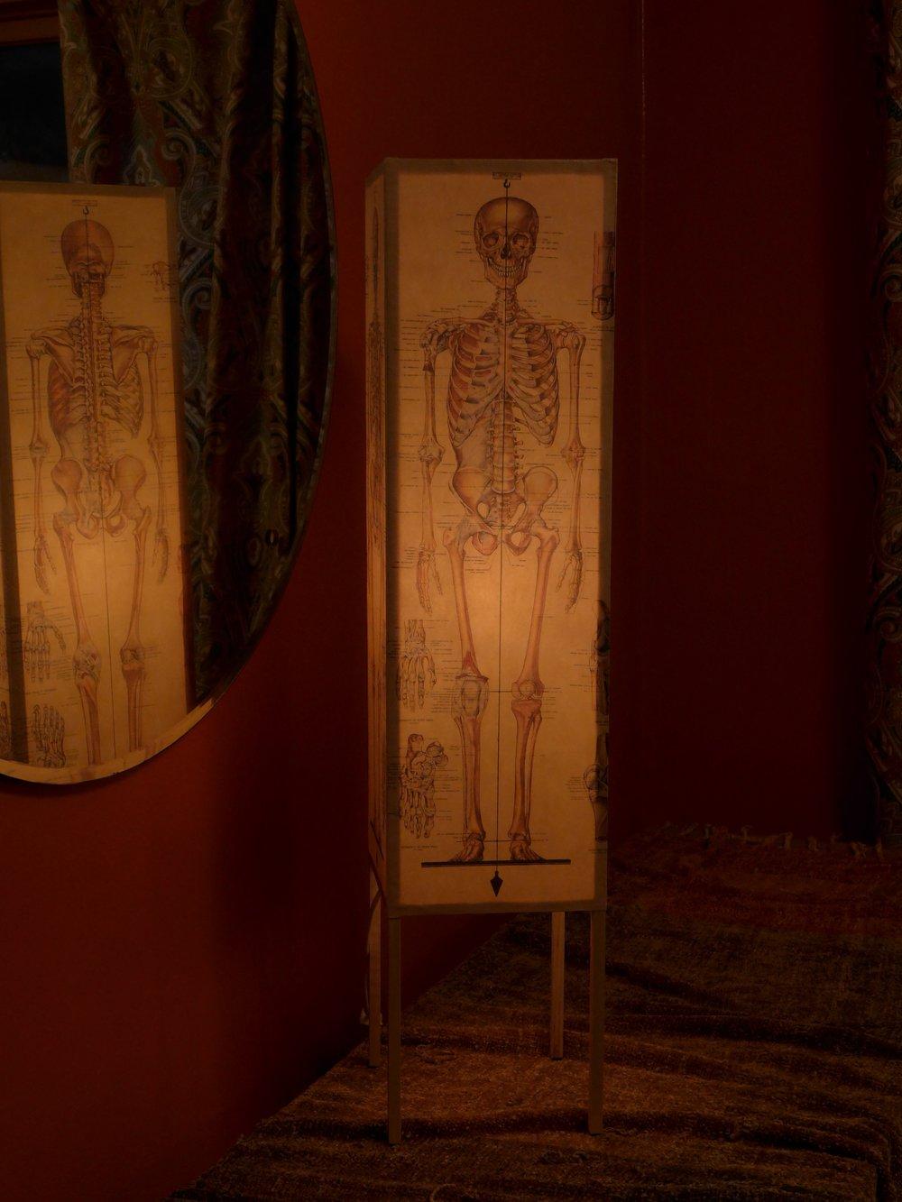 *skeleton in situ.jpg