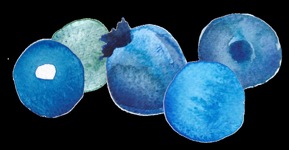 Blueberry - Jewelry