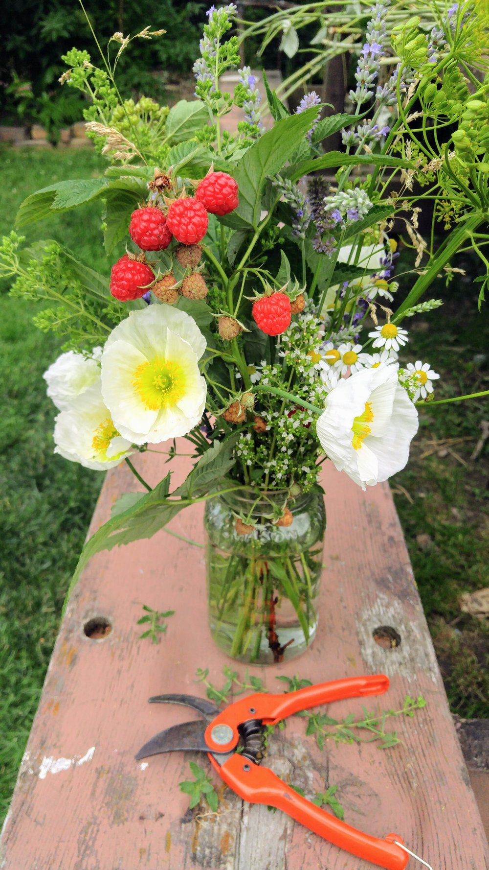 Fresh Flowers grown in North Braddock PA