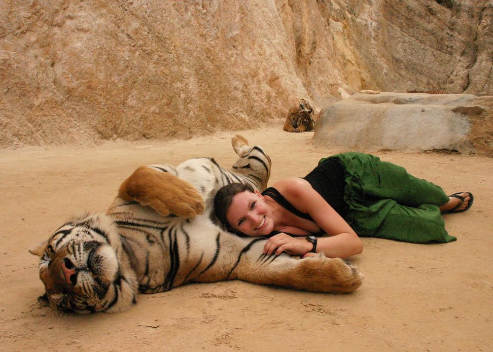 OS 5x7 tiger.jpg