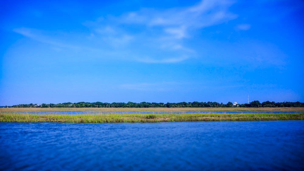 Lowcountry by Boat