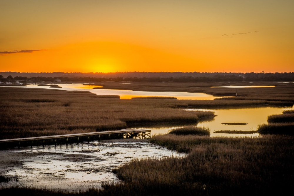 Figure Eight Marsh