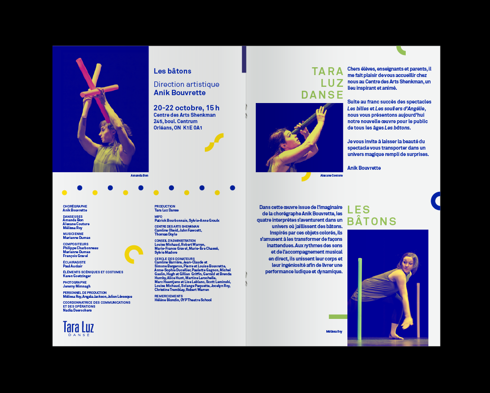 dance-theatre-brochure-animal-haus.png
