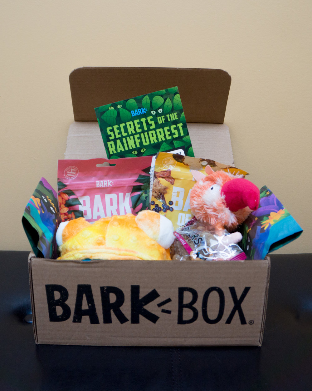 BARKBOX AUG (3 of 5).jpg