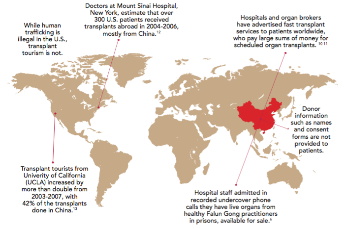 "Image from the FREE DOWNLOAD PDF on organ transplants in China based on the award-winning documentary film ""Hard To Believe""."