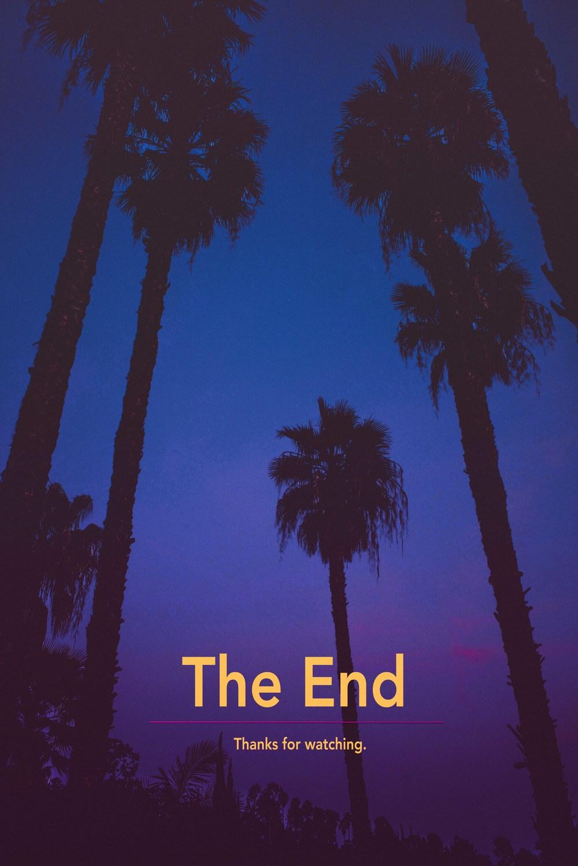 71 The End.jpg