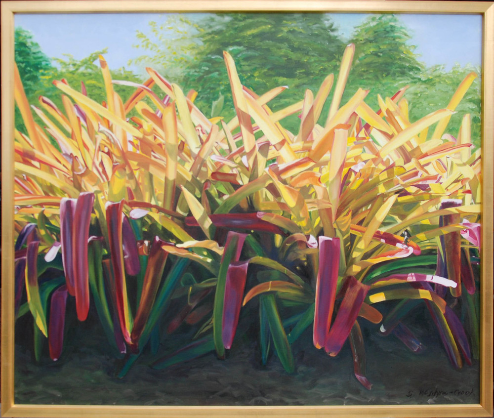 Bromeliads  oil on canvass; 42 x 50; 2013   A row of large bromeliads with hues of gold, yellow and orange in the sunlight.  In the shade they are fuschia, green and blue green.     $2000.00