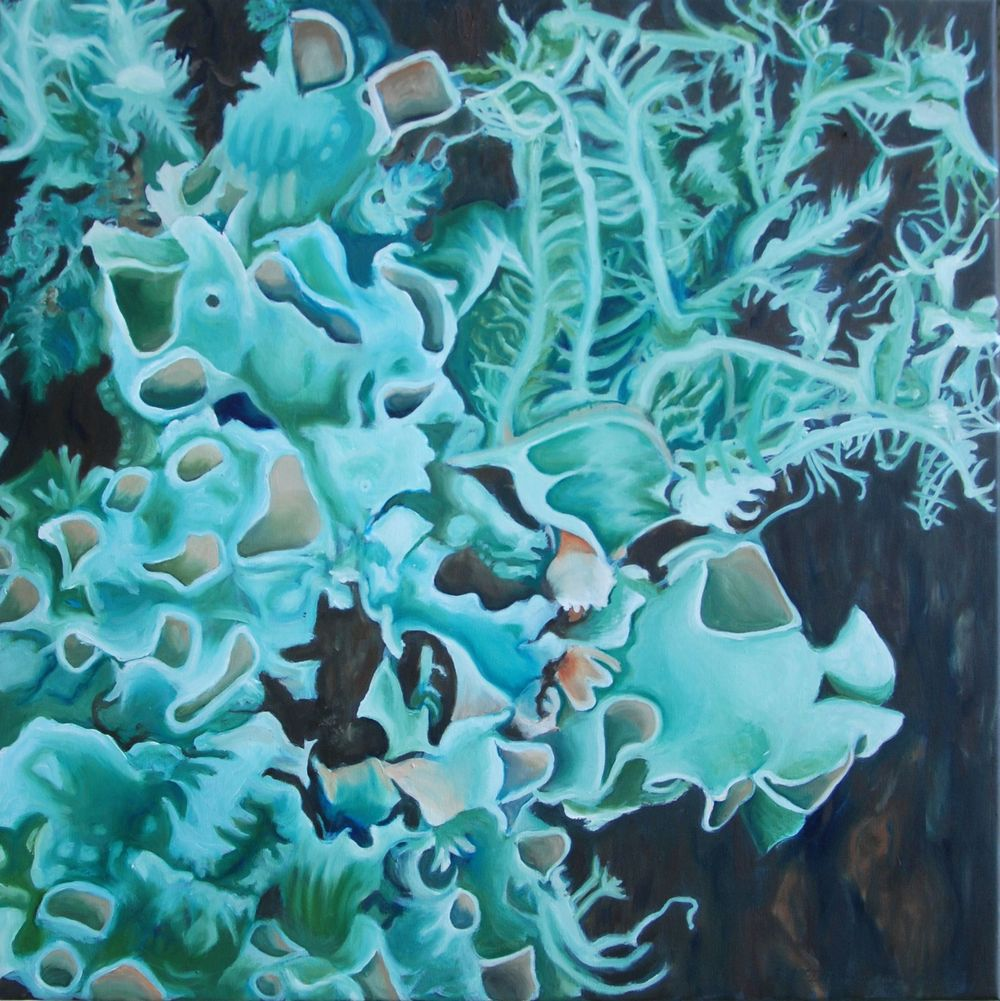 "Blue Green Lichen  oil on canvass; 24"" x 24""; 2015  $275.00"