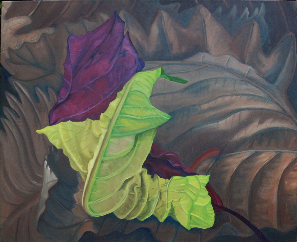 Poinsettia's Embrace I  oil on canvass; 29 x 36; 2015  $600.00   Drying, shriveling green leaf and red bract curl upon each other in an embrace on a bed of dried oak leaves.