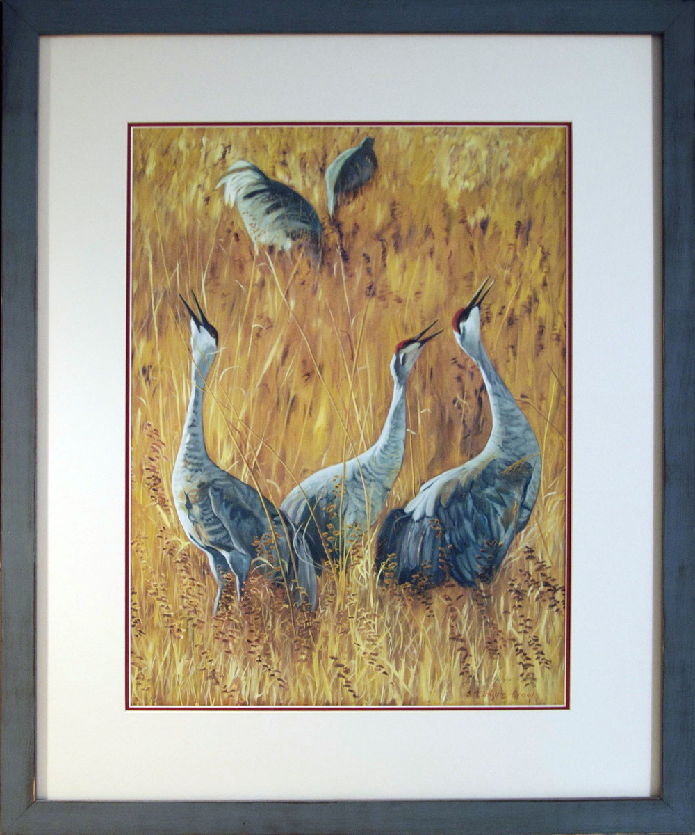 "framed print of Sandhill Cranes Calling (from original oil on canvas painting; 48"" x 36"")  #4 of 50; print: 24"" x 18""; with frame: 29""x34.5""; Ultrachcrome HDR ink  $550.00"