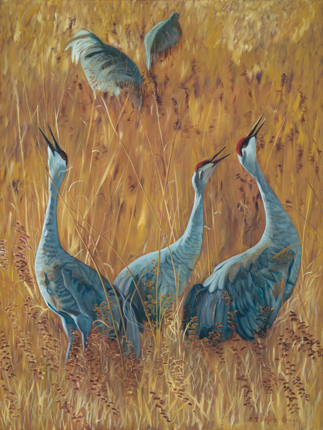 "Print: Sandhill Cranes Calling  limited edition of 50;  24"" x 18""; Ultrachrome HDR ink;  from original oil on canvass 'Sandhill Cranes Calling'; 48"" x 36""  $150.00"