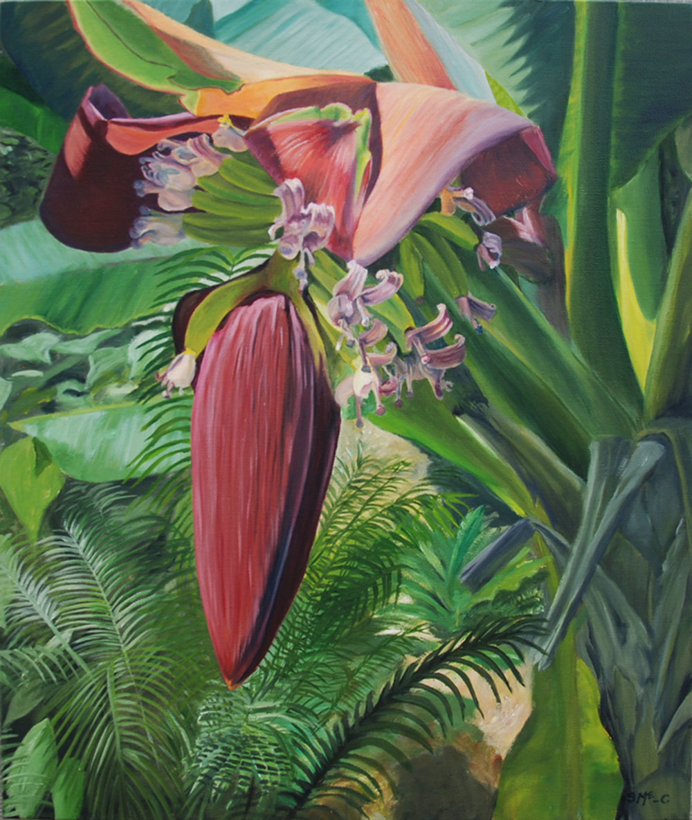 "Banana Blossom  oil on canvas; 24 x 20""; 2016  sold"