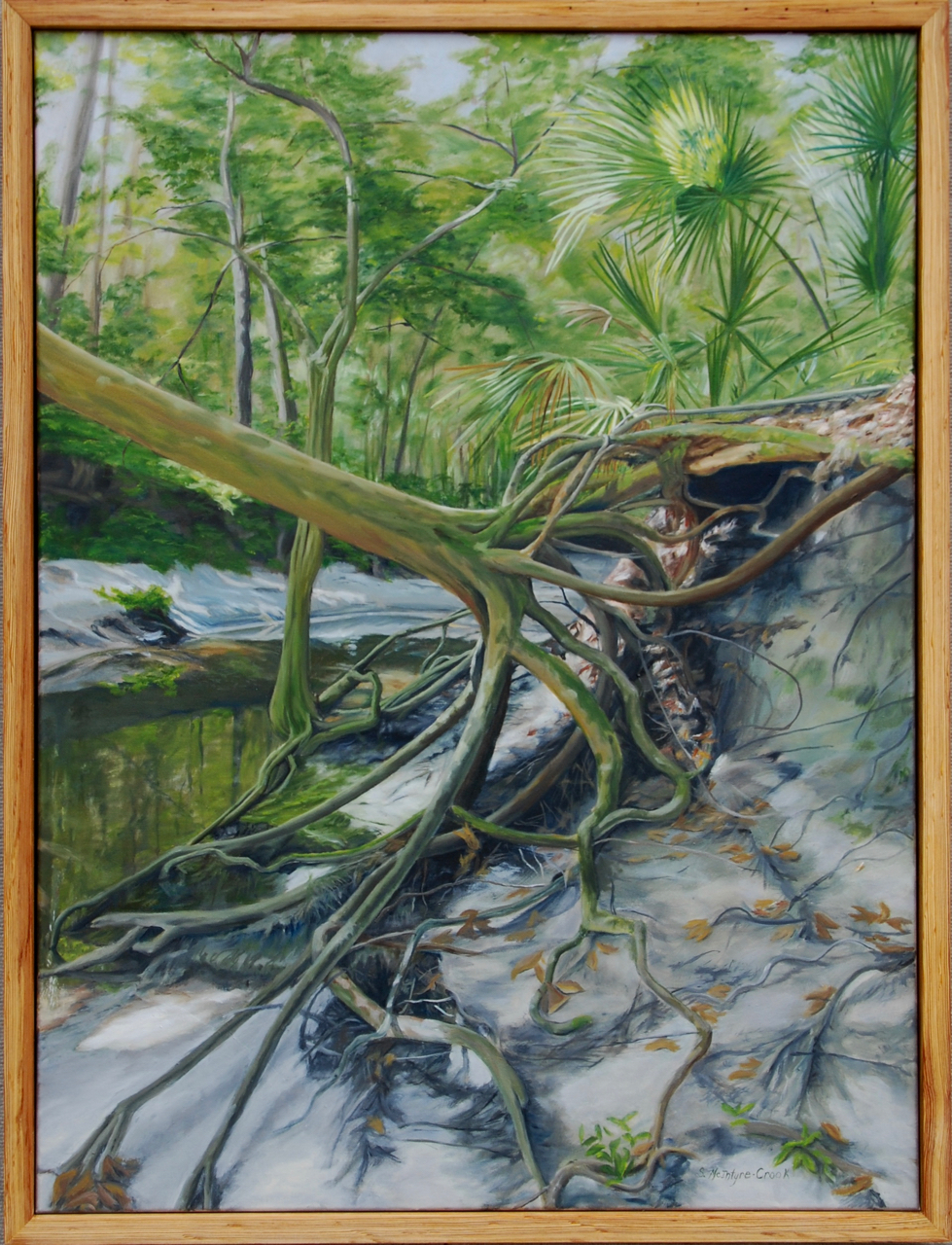 "Tenacious Trees #4 at Loblolly Preserve  oil on canvas; 40x30""; 2017  frame from local old pine  $1000.00"