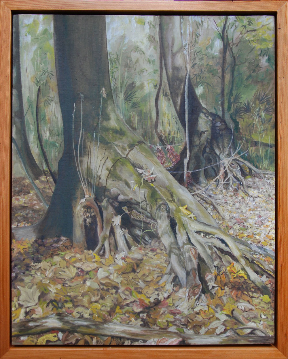 "An Autumn Walk Through San Felasco Hammock #2 of 6; Tree Roots/ Walking Trees  oil on canvas, 22 x 18""; 2010; artist's collection"