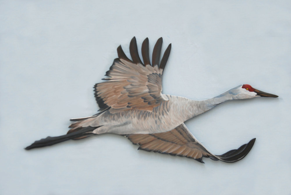 "Sandhill Cut-Out 25R Indoor/Outdoor  acrylic on 5-ply Birch plywood; 26x42""; 2018  360.00"