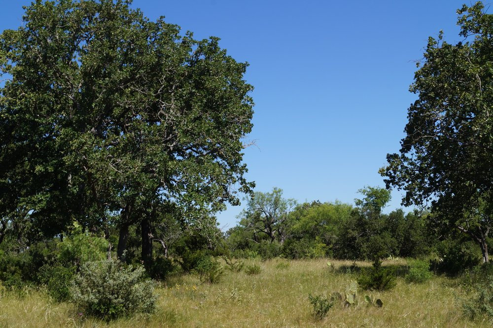 BURNET COUNTY RANCH 395 ACRES BURNET COUNTY   -
