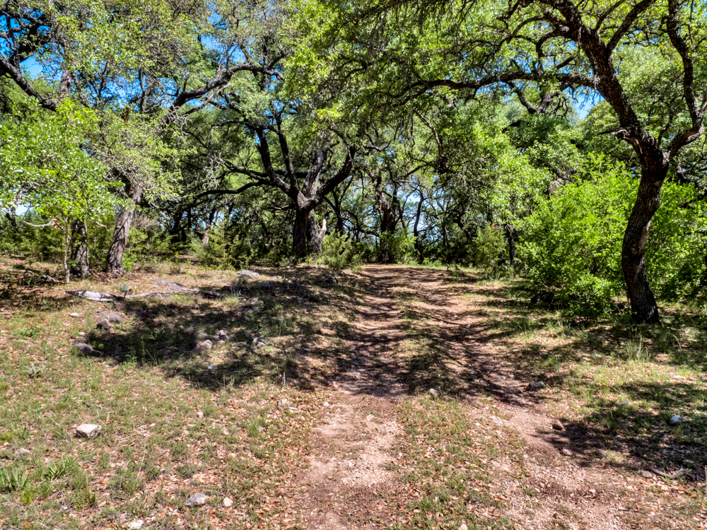 BURNET HUNTING RANCH    230+/- ACRES   BURNET COUNTY