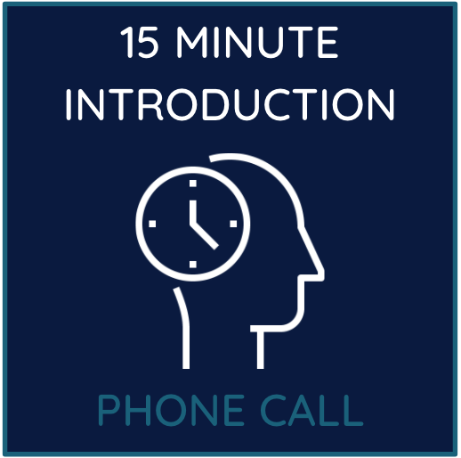 15 minute introduction phone call