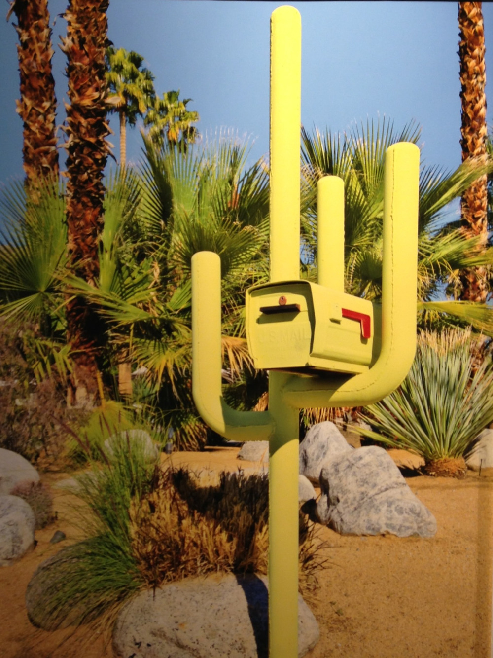 Love the retro California kitsch photos by Dolly Faibyshev @chelseatweeter @uprisenyc