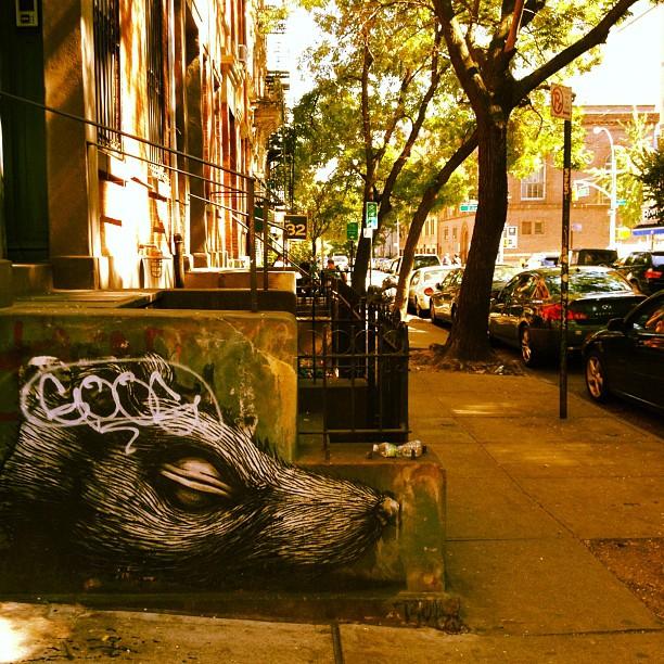 2nd street rat art (Taken with  Instagram )