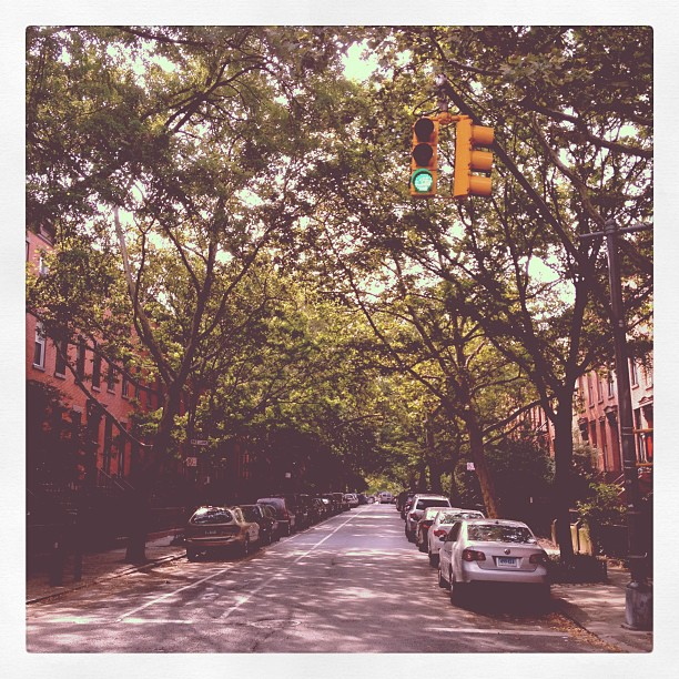 Tree canopied streets of Cobble Hill (Taken with  Instagram )