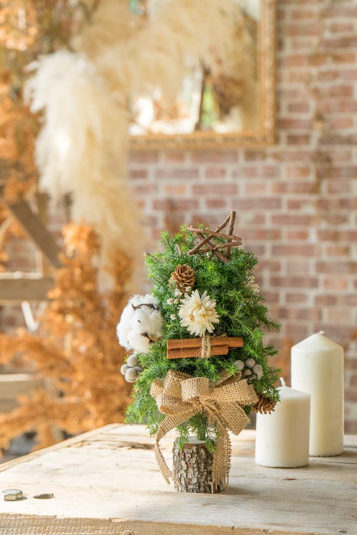 耶誕小樹-3.jpg