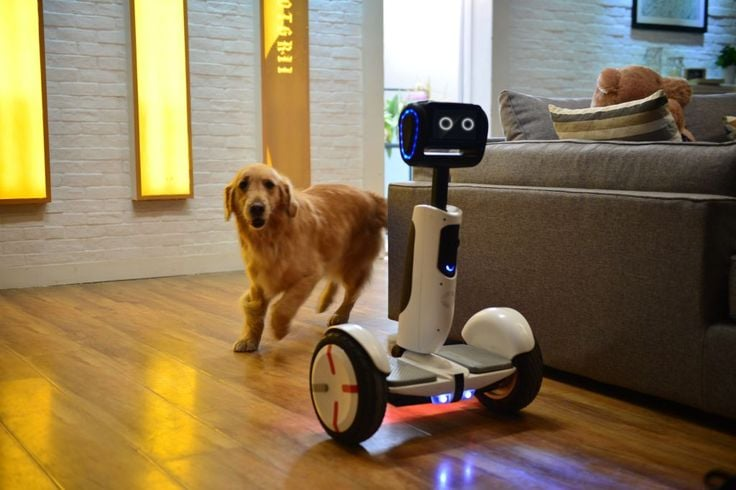 Segway says the company's new home robot, built with Intel and Ninebot, will be ready for consumer testing in the second half of 2016. (  Segway)