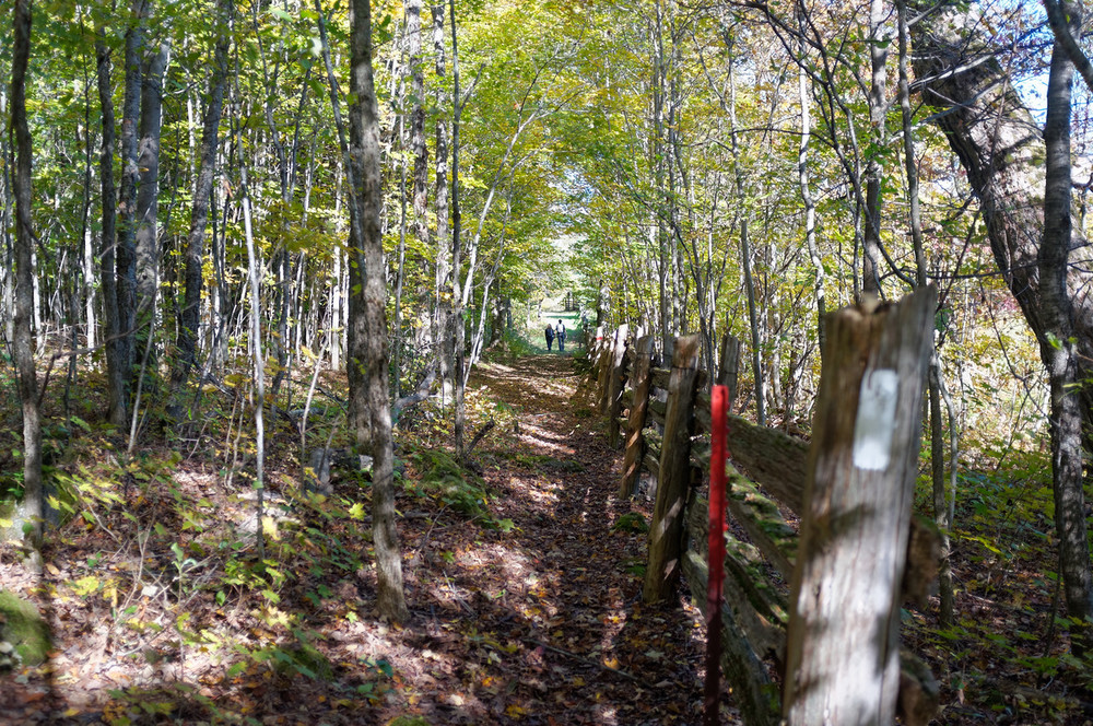 It is funny how often we end up hiking next to fences or boundary lines.