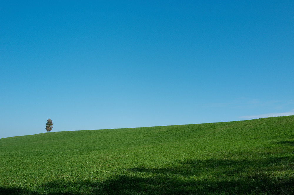 This reminded me of the Bliss wallpaper from Windows XP