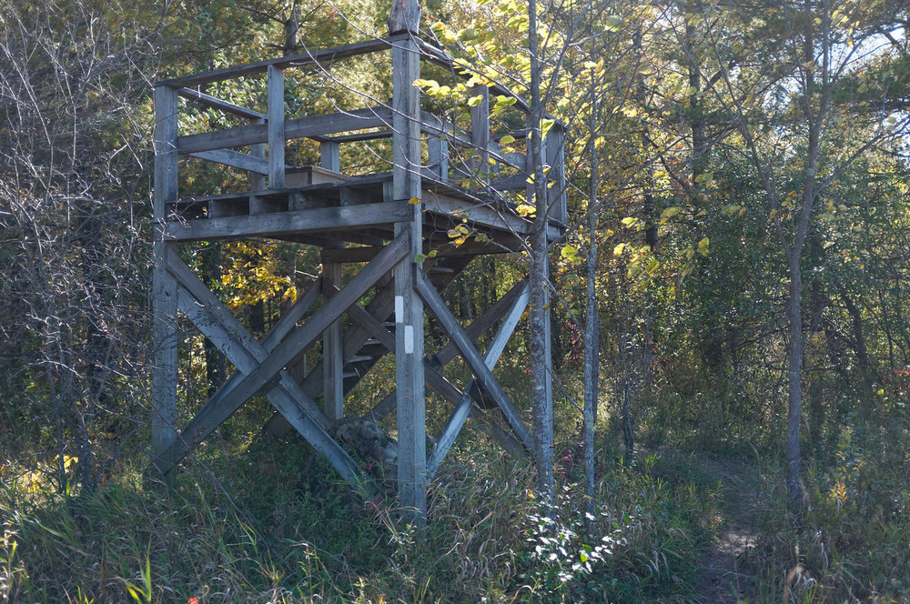 A lookout point for the marsh that is tucked away next to the trail.