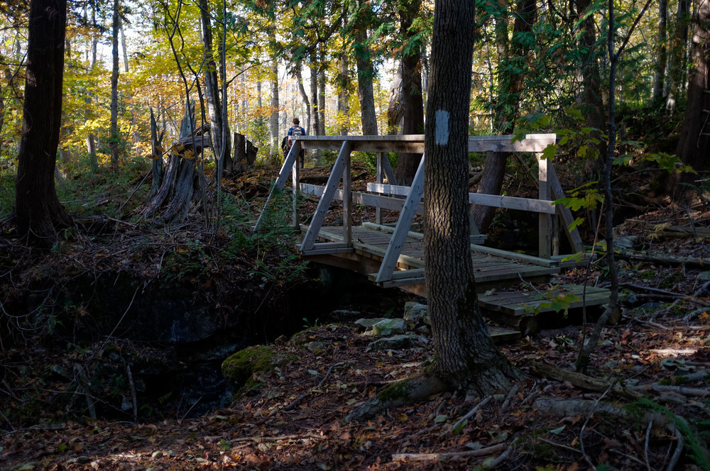 One of a few bridges that take us over a crevice gap.