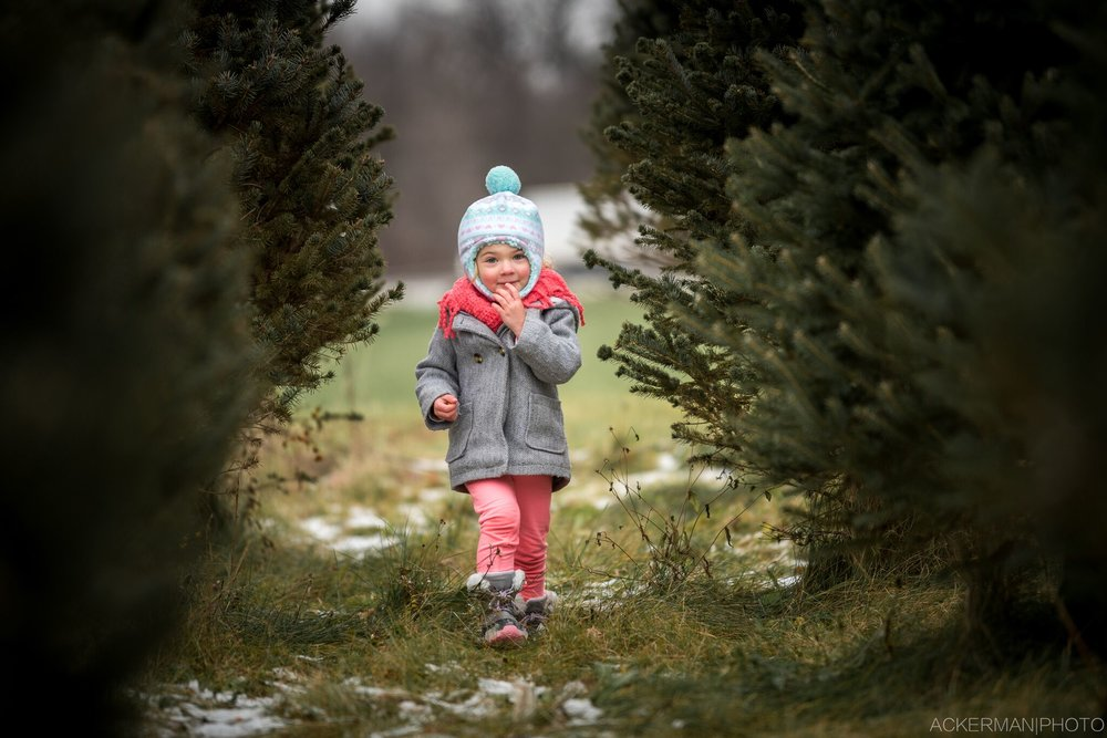 Verro-2016-christmas-web-9_preview.jpeg