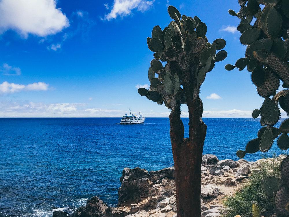 Galapagos Blog (2 of 12).jpg