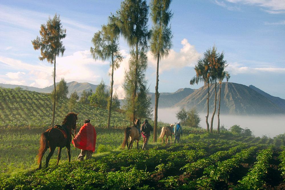 Probolinggo, Java, Indonesia