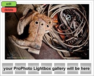 lightbox-placeholder-1317834838.jpg