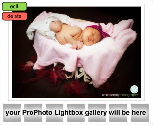 lightbox-placeholder-1351140622.jpg