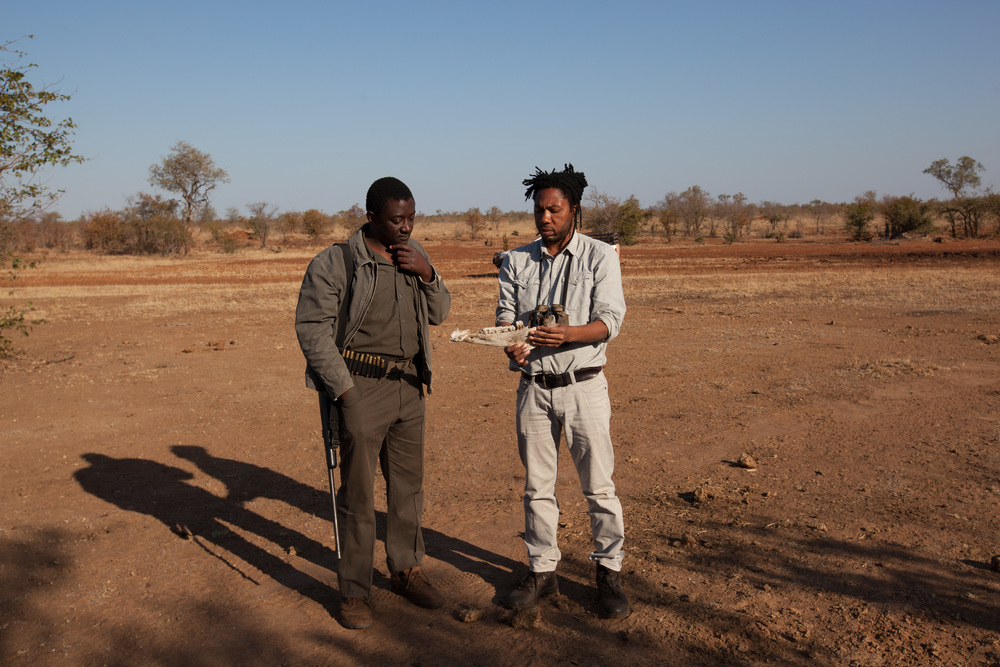 Farayi and Section Ranger Steve Midzi discussing on zebra's scull identifying the age and gender of the animal. Photo ©Lauri Soini