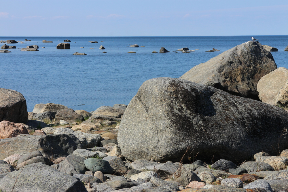 View on the beach by Träkarlen. The rocky shoreline is full of pebbles and blocks forming an outdoor museum for the ice age. The huge amount of erratic blocks is one of the main visible features of the Kvarken Archipelago.