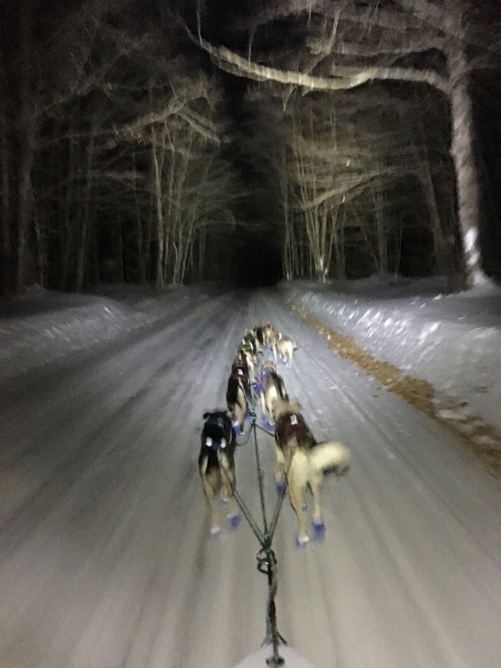 Blurry nighttime plowed road shot, on the leg to wetmore. ariel in single lead.