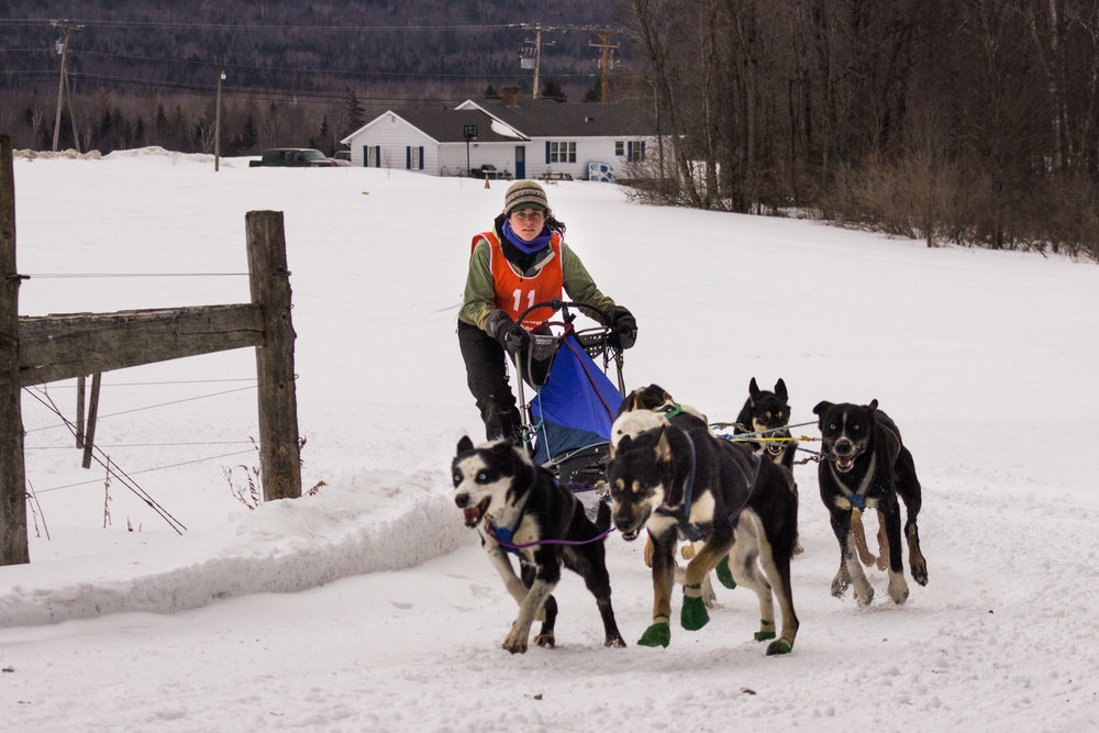 Great Northwoods Sleddog Challenge 2nd Place