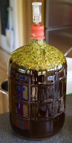 Dry hopping, or adding hops during fermentation Source: Drew's Brew Reviews